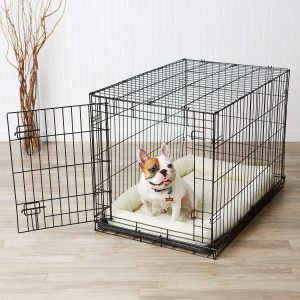 Best Dog Crates The Basics Folding Metal Is Our Pick For Second Option On Market This Cage Has Been Tested Very Good In Quality