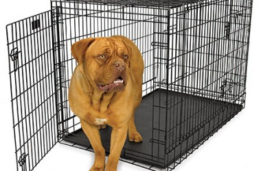 Best Dog Crates - Best Dog Crates and Beds