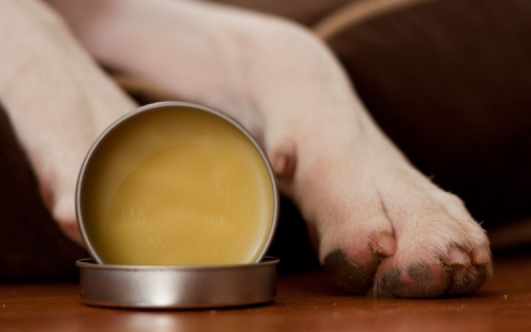 Paw Wax for Dogs