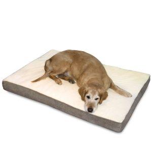 Best Orthopedic Dog Bed - Best Dog Beds