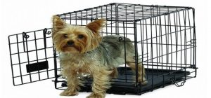 best_dog_crate