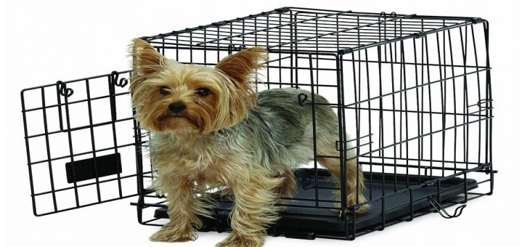 Best Dog Crate Reviews Of 2018 And Buying Guide