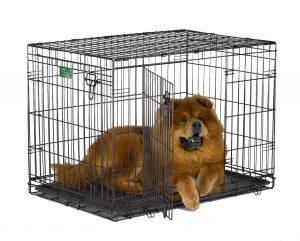 Best Dog Crates - iCrate