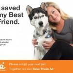 BestFriends - Dog Organizations