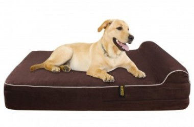Kopek Orthopedic Memory Foam Dog Bed Review - Best Orthopedic Dog Bed 1