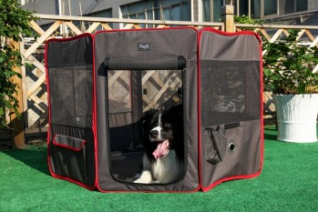 Petsfit Portable Foldable Pop Up Dog Playpen Exercise Pen