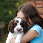 What to Do Before Getting a Puppy