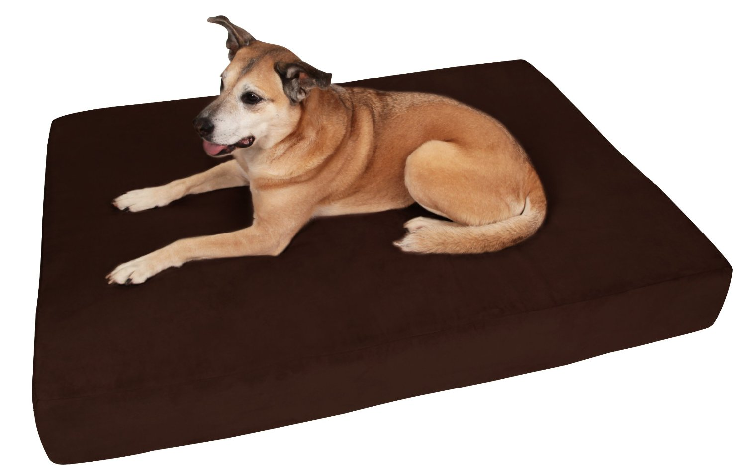 top 6 best orthopedic dog bed reviews for 2017. Black Bedroom Furniture Sets. Home Design Ideas