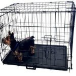 Kennelmaster Folding Kennel Crate with Divider Review