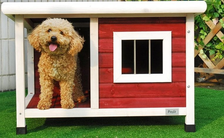 Petsfit Dog House, Dog House Outdoor (4 Sizes) Review