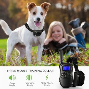 JoyousAcc Dog Training Collar with Remote Review