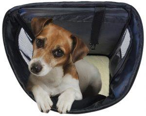 KritterWorld Outdoor Soft-Sided Dog Cat Pet Carrier Review