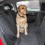 Lescco Pet Car Seat Cover Review