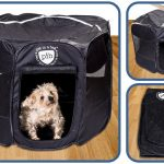 Pet Playpen - Pet in a Bag Review