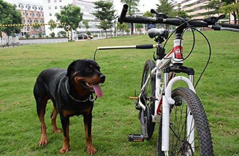 Premium Pet Gear Hands Free Dog Bicycle Exerciser Leash Review