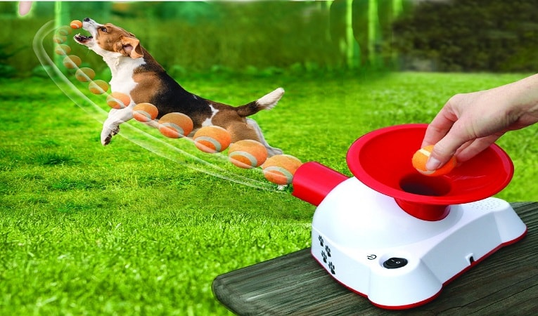 Talking Dog Fetcher - Battery Operated Mini Tennis Ball Launcher And Mini Tennis Balls Review