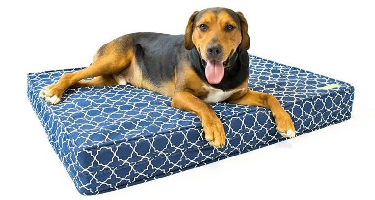 "Orthopedic Dog Bed - 5"" Thick 