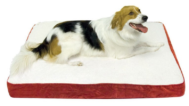 Happy Hounds Oscar Orthopedic Dog Bed, Medium 30 by 42-Inch Birch Review