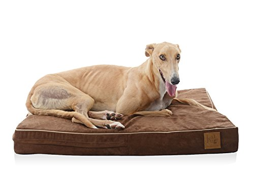 Laifug 45DHI Premium Memory Foam Orthopedic Extra Large Pet/Dog Bed Review