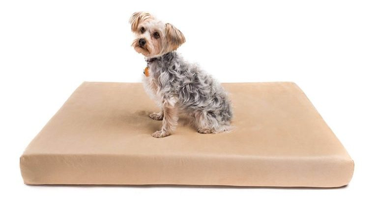 "Romilton - ""The Charlie"" Premium Orthopedic Memory Foam Dog Bed. Water Resistant Cover Is Removable and Washable Review"