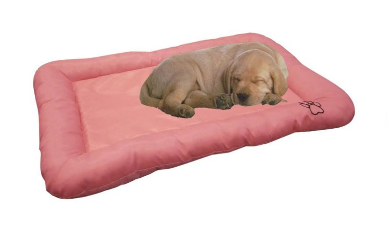 Beatrice Home Fashions Crate Pad Review Best Dog Crates And Beds