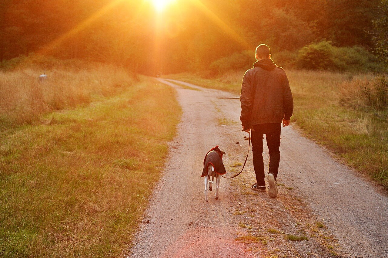 Health and Fitness Benefits of Dog Ownership