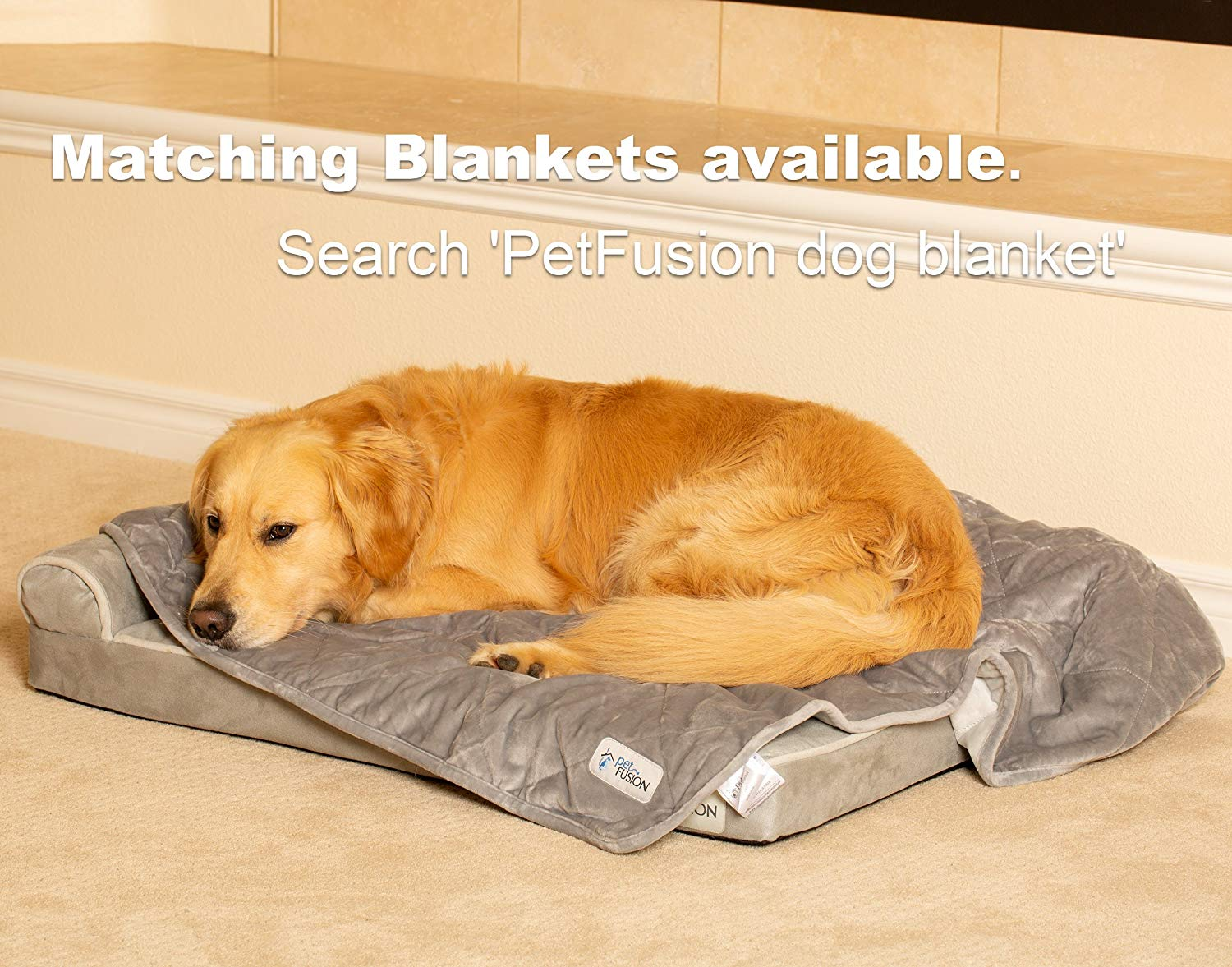 New! PetFusion BetterLounge Dog Bed Review
