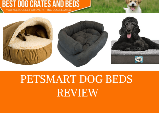 Petsmart Dog Beds Review Pros And Cons That You Need To Know