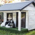 a dog taking a rest on his modern dog house