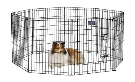 Best dog playpen example