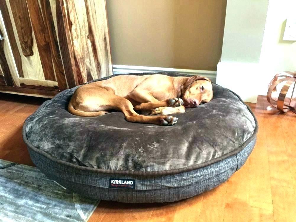 Kirkland dog bed
