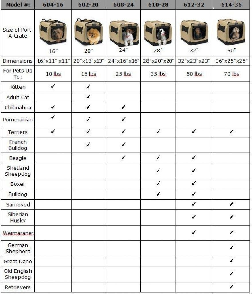 Best dog crate size chart