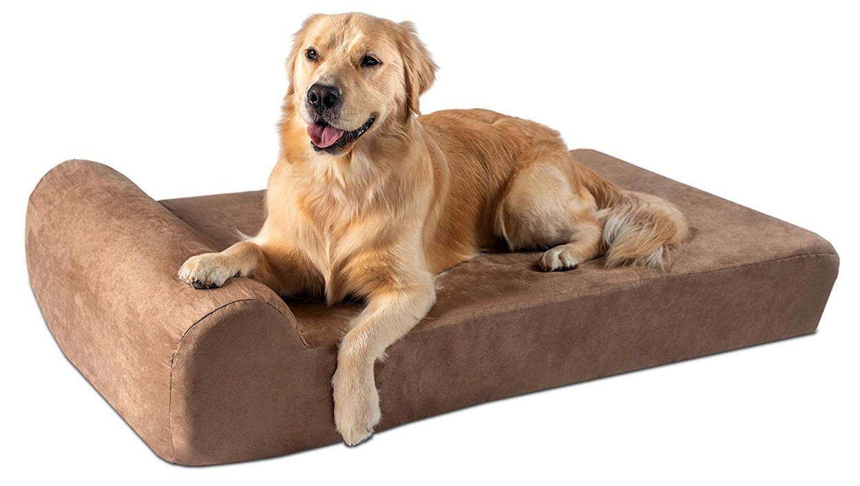 big barker dog bed with a golden dog on it