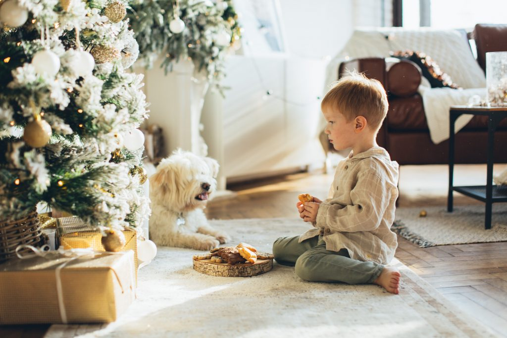 Boy and Dog Xmas