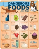 People Foods that Poison Dogs