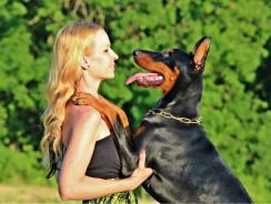 Help for People with Seizures: Dogs that Detect Episodes