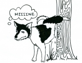 Cat and Dog Marking: Territorial Urine Marking Behavior in Pets