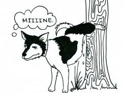 Cat and Dog Marking: Territorial Urine Marking Behavior in Pets