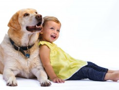 Most Suitable Dogs for Children