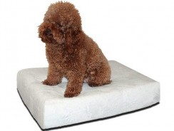 Brentwood 4-Inch Gel Memory Foam Orthopedic Dog Bed Review