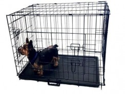 Kennelmaster Folding Kennel Crate with Divider Review (3 Sizes)