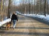 Finding Ways to Exercise Your Dog
