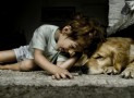 The Safety Zone: Kids and Dogs