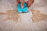 Best Stain Remover – Top 10 Picks