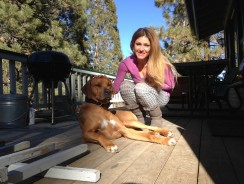 Eight Simple Steps to Affordable Dog Ownership